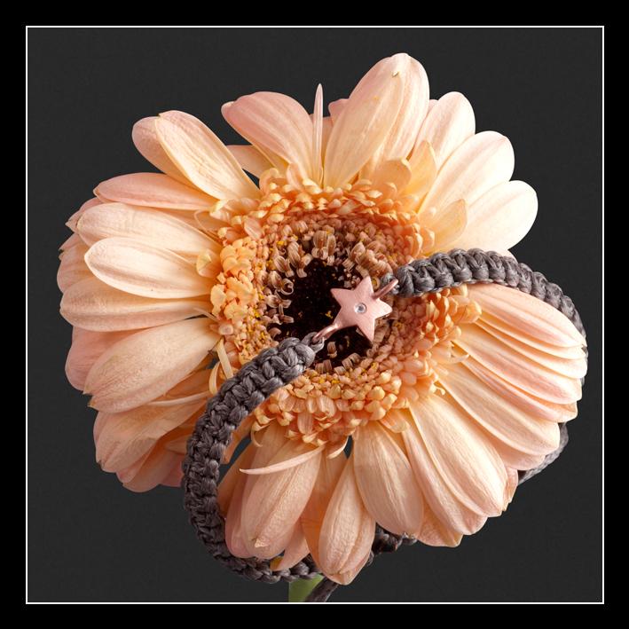 JEWLSCPH smykke armbånd med stjerne i blomst design Mai Manniche fotograf Peter Dahlerup Nordsjælland og København