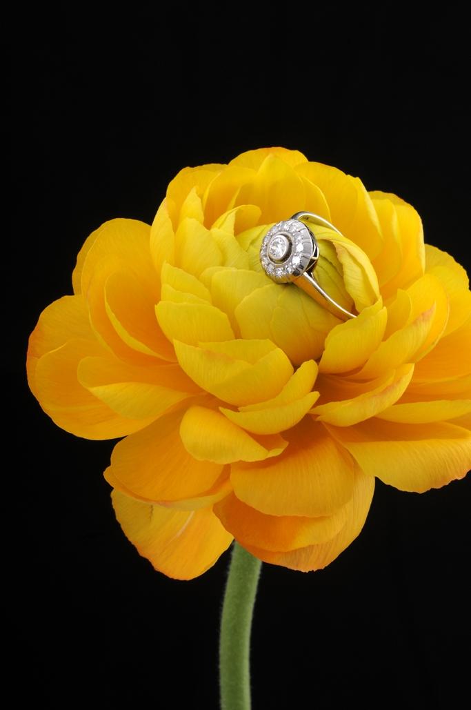 Smykketest mail roset ring med diamanter i blomst fotograf Peter Dahlerup Fredensborg ref F0524