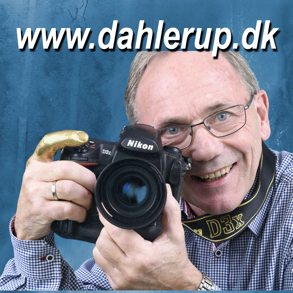 Peter Dahlerup profilbillede